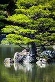 Japanse zentuin in het park van de kinkakujitempel, Kyoto Stock Afbeeldingen