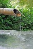 Japansk bambuspringbrunn Arkivbilder