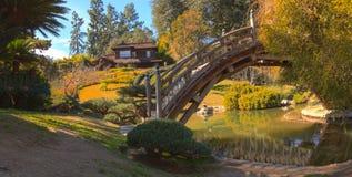 Japansk botanisk trädgård på den Huntington botaniska trädgården Royaltyfri Bild