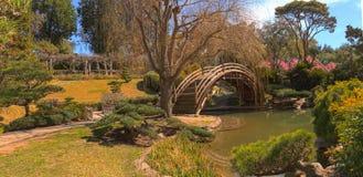 Japansk botanisk trädgård på den Huntington botaniska trädgården Royaltyfri Fotografi