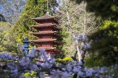 Japansk byggnad i trädgård Arkivfoto