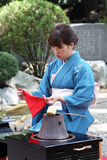 Japansk ceremoni för grönt te i trädgård Royaltyfri Bild