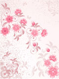 Japansk Cherryblomning Royaltyfri Fotografi