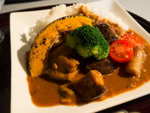 Japansk curry, kyoto stil Fotografering för Bildbyråer