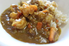 Japansk curryrice Royaltyfria Bilder