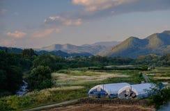 Japansk förorts- lantgård Arkivfoton