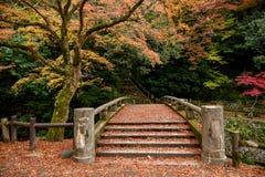 Japansk gammal traditionell bro Arkivfoto