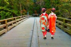 Japansk geisha Royaltyfri Fotografi