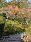 Japansk höstträdgård i den Tenryuji templet under höstsäsong I Arkivfoton