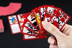 Japansk kortspelhanafuda royaltyfria bilder