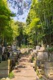Japansk kyrkogård Royaltyfri Foto