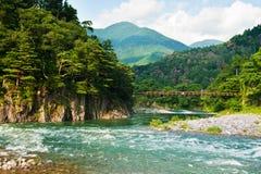 japansk liggande Fotografering för Bildbyråer