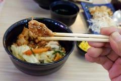 Japansk mat, bruksfläskkotlett som ska ätas royaltyfria foton