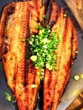 Japansk mat, grillad fisk Arkivbild
