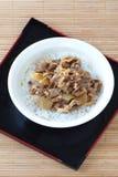 Japansk maträtt Fotografering för Bildbyråer