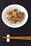 Japansk maträtt Arkivfoto