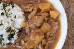 Japansk maträtt för curryris Royaltyfri Bild