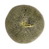 Japansk melon Fotografering för Bildbyråer