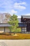 Japansk mossaträdgård Royaltyfri Bild