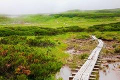 Japansk nationalpark Daisetsuzan i Hokkaido Fotografering för Bildbyråer