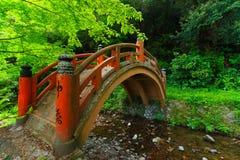 Japansk naturplats med bron Arkivbilder