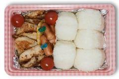 Japansk picknickask Royaltyfri Foto
