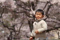 Japansk pojke och körsbärsröda blomningar Royaltyfri Bild