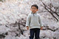 Japansk pojke och körsbärsröda blomningar Arkivfoto