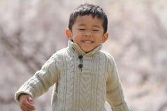 Japansk pojke och körsbärsröda blomningar Arkivbilder