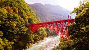 Japansk röd bro i skog Arkivfoton