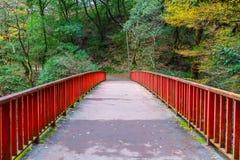 Japansk röd bro i skogen Arkivfoton
