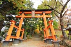 Japansk relikskrin Arkivbild