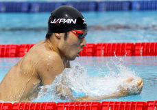 Japansk simmare Kosuke Hagino Arkivfoto