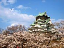 Japansk slott med den Sakura blomningen Royaltyfri Bild