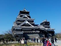 Japansk slott Shiro Royaltyfri Foto