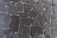 Japansk stenväg i den Kanazawa slotten Royaltyfria Bilder
