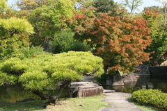 Japansk stilträdgård Arkivfoto