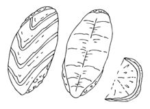 Japansk sushi för mat två och en skiva av citronen vektor illustrationer