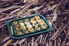 Japansk sushi i den kasserade asken Royaltyfri Fotografi