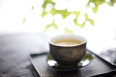japansk tea Fotografering för Bildbyråer