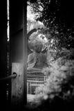Japansk teträdgård Royaltyfri Bild
