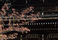 Japansk texturbakgrund Arkivfoton
