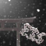 japansk torii Fotografering för Bildbyråer