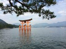 japansk torii royaltyfri bild
