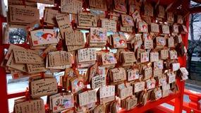 Japansk träönska Royaltyfria Bilder