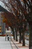 Japansk vägrenvagn nära pir på Mojiko, Kitakyushu, Fukuok royaltyfri fotografi