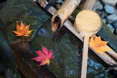 Japansk zenträdgård för avkopplingjämvikt Royaltyfri Foto