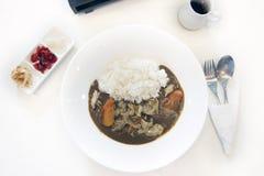 Japanska curryris med griskött och sidodisk arkivbild
