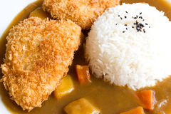 Japanska curryris, stekt fiskcurry Royaltyfria Foton