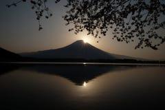 Japanska körsbärsröda blomningar ses framme av Mt Fuji, Shizuoka, Japan royaltyfri bild